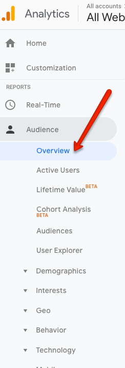 audience_overview